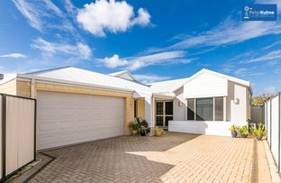 Picture of 46A Hutt Road, Morley WA 6062