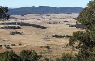 Picture of Braidwood NSW 2622