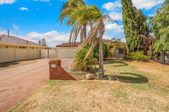 Picture of 105 Coronata Drive, WARNBRO WA 6169