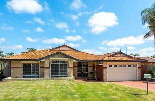 Picture of 79 Turquoise Loop, Banksia Grove WA 6031
