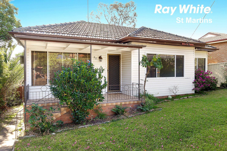 22 Austin Avenue, Campbelltown NSW 2560, Image 0