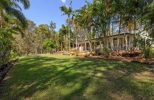 Picture of 32 Herron Road, Pie Creek QLD 4570