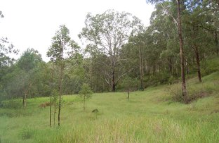 Picture of 643 Yabbra Road, YABBRA via, Bonalbo NSW 2469