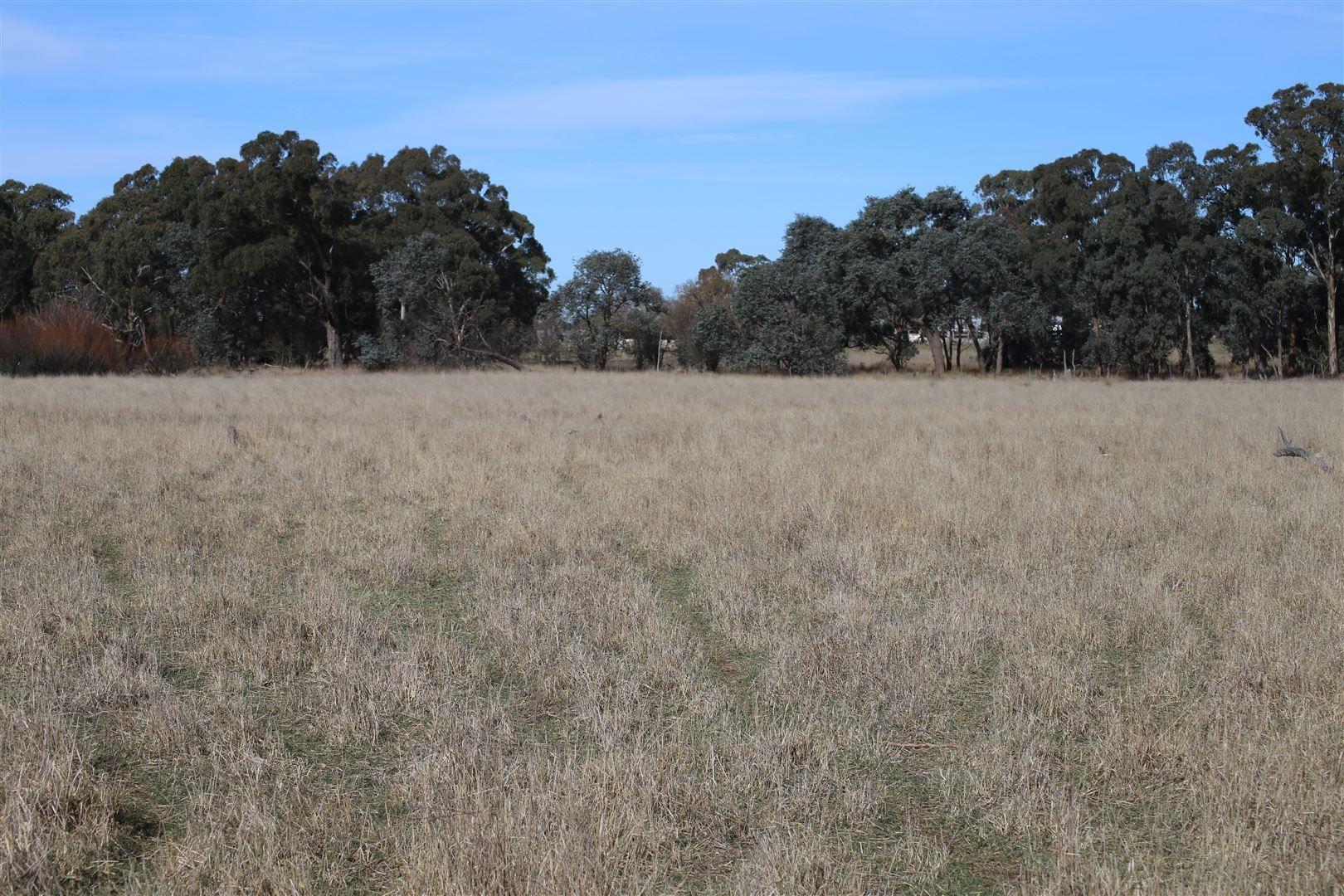 lot 163 Flacknell Creek Road, Gunning NSW 2581, Image 1