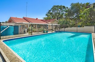 Picture of 51 Yangoora Cresent, Ashmore QLD 4214