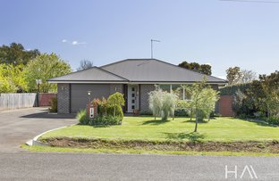 Picture of 55a Shadforth  Street, Westbury TAS 7303