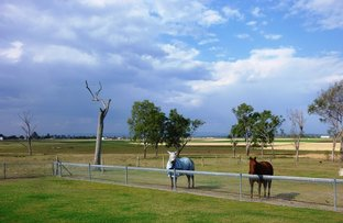 47 Wendts Road, Mount Tarampa QLD 4311