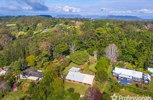 Picture of 35-39 Alpine Terrace, Tamborine Mountain QLD 4272