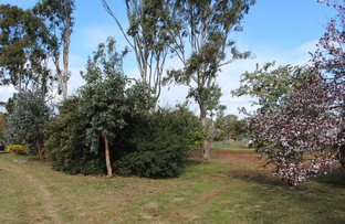 Picture of 59 McLean Street, Briagolong VIC 3860
