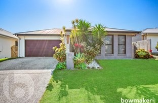 Picture of 31 Tattler Street, Mango Hill QLD 4509