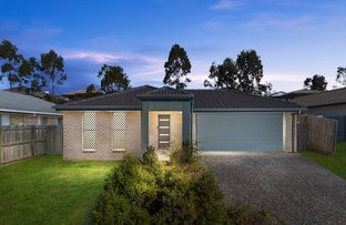 Picture of 4 Doogal Court, Redbank Plains QLD 4301