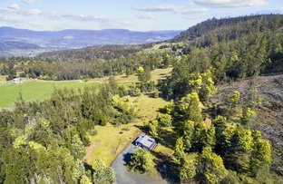 Picture of 354 Braslins Road, Black Hills TAS 7140