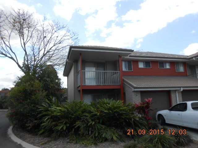 WY/99 Peverell Street, Hillcrest QLD 4118, Image 1