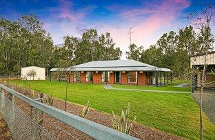 243 Postmans Ridge Road, Postmans Ridge QLD 4352