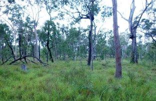 Picture of 98 Jacaranda Drive, Ravenshoe QLD 4888
