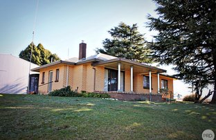 Picture of 175 Willigobung Rd, Tumbarumba NSW 2653