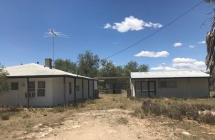 Picture of 11 Hurtles Well Road, Peake SA 5301