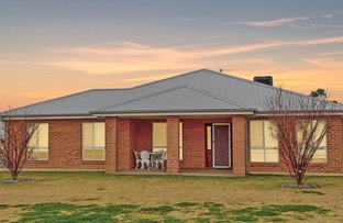 Picture of 47 Loughan Road, Junee NSW 2663