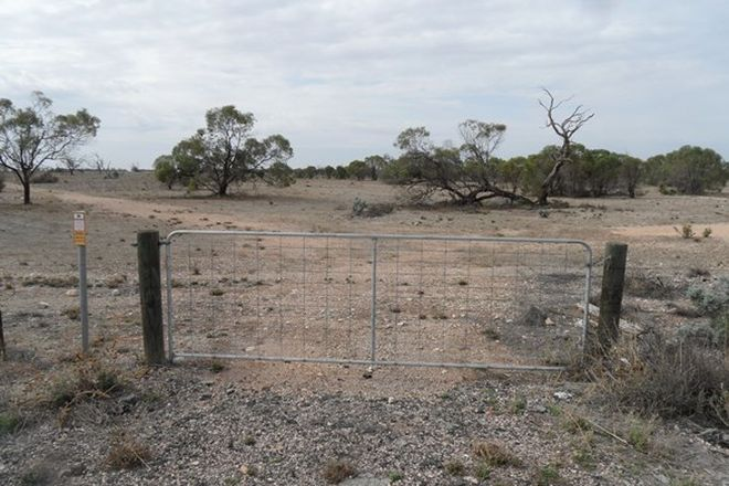 Picture of Section 106 Sturt Highway, BLANCHETOWN SA 5357