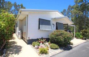 Picture of 77/36 Golding  Street, Yamba NSW 2464