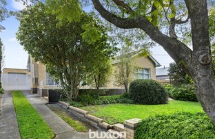 Picture of 41 Jean Street, Cheltenham VIC 3192