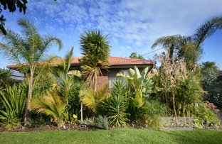 Picture of 175 Wallace Street, Bairnsdale VIC 3875