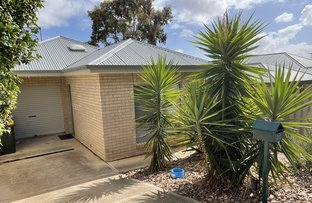 Picture of 31 Park Terrace, Enfield SA 5085