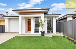 Picture of 23a Tralee Avenue, Broadview SA 5083