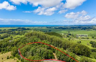 Picture of 330 Pottsville Road, Sleepy Hollow NSW 2483