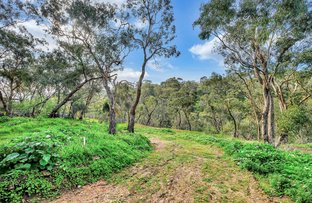 Picture of 18B Willunga Street, Eden Hills SA 5050