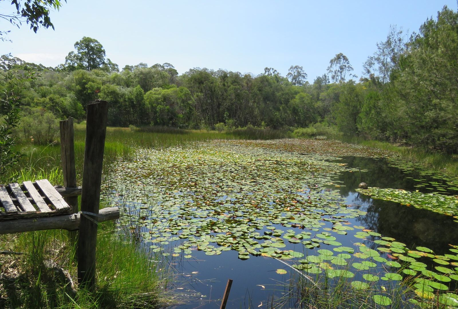 Kundabung NSW 2441, Image 1