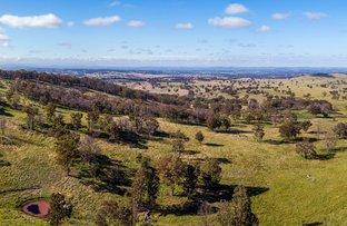 Picture of 1339B Torrington Road, Stannum NSW 2371