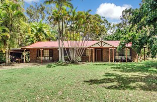 Picture of 10 GAIL COURT, Burpengary QLD 4505