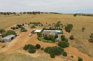 68 Robert Road, Goomalling WA 6460
