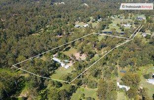 Picture of 28 Palomino Road, Tamborine QLD 4270