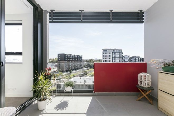 Picture of 507/14 McGill Street, LEWISHAM NSW 2049