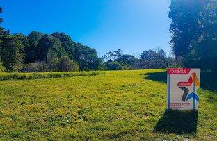 Picture of 4 Kuralboo Street, Springbrook QLD 4213