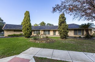 Picture of 69 Fulham Park Drive, Lockleys SA 5032