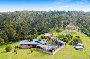 Picture of 455 Kianga Forest Road, Kianga NSW 2546