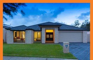 139 Trinity Way, Drewvale QLD 4116
