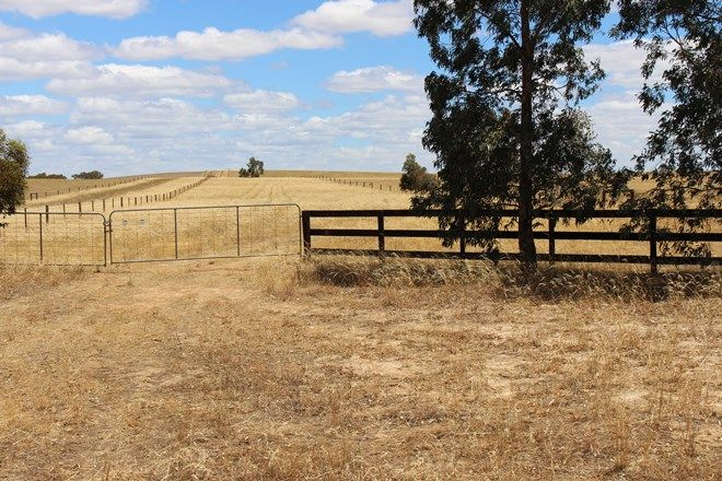 Picture of 1056 Baan Hill Road, LAMEROO SA 5302