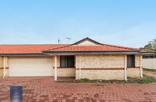 Picture of 1/342 Flinders Road, Nollamara WA 6061