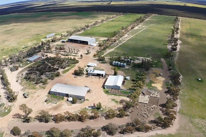 Picture of 8811 Southern Cross South Road, WEST HOLLETON WA 6369