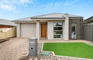 Picture of 21 Boyle Street, Marion SA 5043