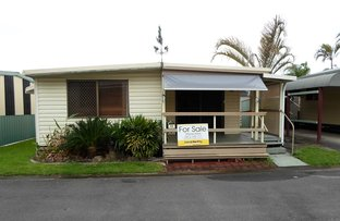 Picture of 36/586 River Street, West Ballina NSW 2478