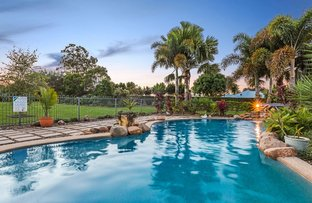 Picture of 6 Champagne Court, Morayfield QLD 4506