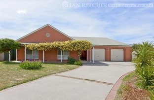 Picture of 420 Tumgarra Place, Lavington NSW 2641