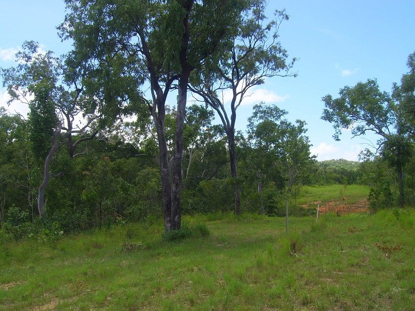 Lot 56 Solander Road, Cooktown QLD 4895, Image 0
