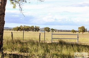 Picture of 140 Springs Road, Greymare QLD 4370