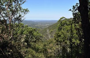Picture of Lot 19 Dawson Creek rd , Mount Nebo QLD 4520